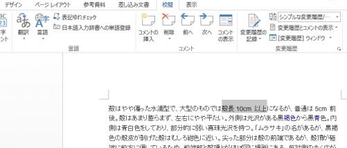 Word_コメント_1