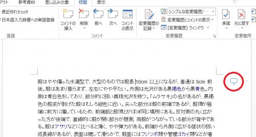 Word_コメント_3